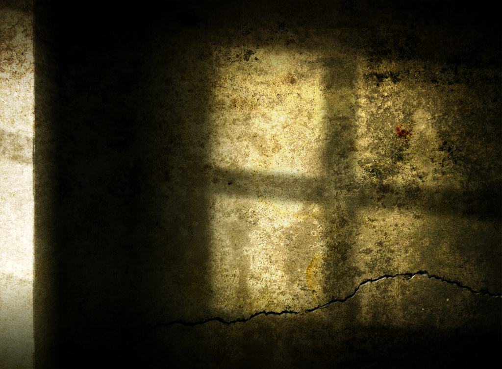 Dark Room: Out Of Darkness, Light