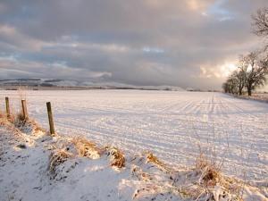 Snowy Landscape by Lis Burke | CC BY-SA 2.0
