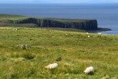 Scotland Landscape 14